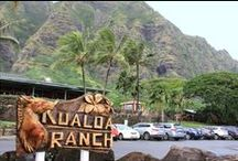SYNLawn at Kualoa Ranch / Proud to have installed turf at the legendary Kualoa Ranch on Oahu.
