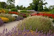 Gardens & Estate