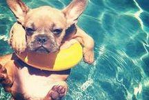 ENDLESS SUMMER / Boho Buys <3's Summer