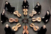The world of cello
