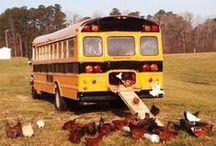 co można zrobić z autobusu / lub tramwaju i tym podobnych