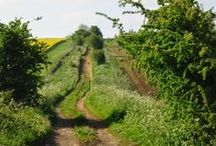 Cotswold Footpaths