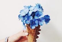 Ice cream & Flowers