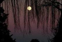 Sky & Moon