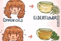 Natural Remedies / Homemade and natural remedies for common sickness and ailments.