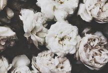 • flower love •