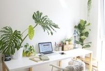 . workspace . / decoration and inspiration walls