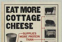 History of Cheese / History