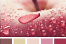 design seeds palettes / more colour inspiration