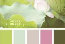 Colour Combinations / Beautiful colour combinations.