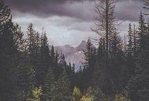 Nature & Landscapes