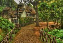 Tesouros da Madeira - Portugal / Abençoada com um clima perfeito, conhecida pela sua rica gastronomia e possuidora de uma beleza incrível, a Ilha da Madeira seduz turistas de todo o mundo. Descubra mais em: www.asenhoradomonte.com