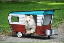 Lucky Pet - Pet Palaces / A Pet's Home is their Palace - or Bed or Kennel