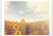 MY Sunshine / Let there be light! / by Maria Kashem
