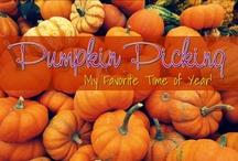 Pumpkin {Love}