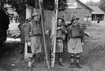 52nd Lowland Division / by Scottish Military Research Group