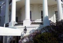 White House Garden Tour / These are the White House Garden tour photos