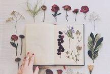 Art / by Mariah Munroe