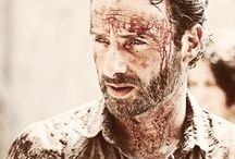 The Walking Dead / Awesome serie with Andrew Lincoln, Norman Reedus and other brilliant actors
