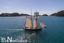 Sailing and Yacht charters in New Zealand / Sailing and yacht charters in New Zealand and where to sail around NZ