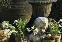 Garden / Alles wat een tuin mooi maakt. / by Petra Beckers
