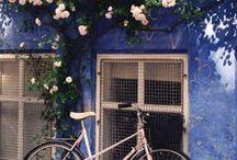 .bike.