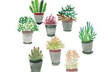 Cactus, succulent LOVE / cactus, succulent, doodling, doodle, draw, drawing, kaktus, sukulent, rośliny