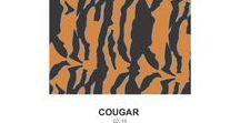 Oddballs x Cougar