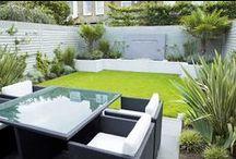 Garden & Landscape / home gardening ideas!