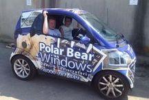 Meet the Polar Bears / See the faces behind Polar Bear Windows!