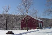 Barns / by Libby Stover