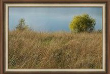 Carla Pivonski® Images - Tranquil Day  / Landscape images by photographer, Carla Pivonski.