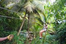 St. Lucia Land Adventures / Adventures on land in St. Lucia - what our expert concierge service recommends and can schedule for you.