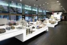 DAY Interior & Retail Works