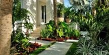 Landscaping || Nature