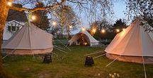 Ryfylke glamping / Glamorous camping on the west coast of Norway.