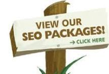 Seo Services / Want to promote your business in online market then Search engine optimization is one of the best ways to get more business.