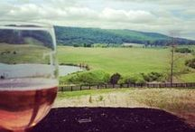 Virginia Wineries / Come taste your way through Albemarle county at numerous wineries!