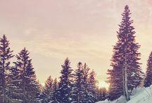 Ski ,snow,montagne