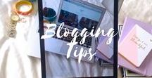 Blogging + Photography Tips / Follow this board to find tip, tricks, and advice to enhance your travel blog and travel photography skills.