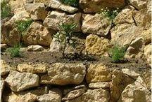 Kertépítés - Egy csupasz domboldal átalakulása