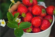 Strawberrys / Erdbeeren