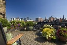Jean Brooks Landscapes in The City / Urban Gardens and Rooftop Terraces