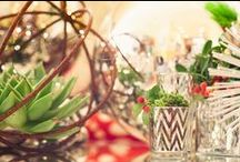 Holiday Decorating / Holiday Decorating and Inspiration