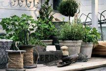 garten / Gartenhäuser und Deko