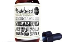 Essential Oil / Undiluted essential oils and premium aromatherapy products from Invivo Essential