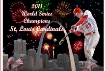 st louis cardinals <3 / by Heather Ralston