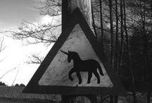 •• Unicorns ••