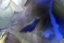 Abstraktia