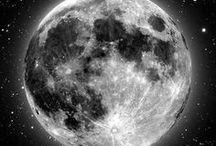 •• Luna ••